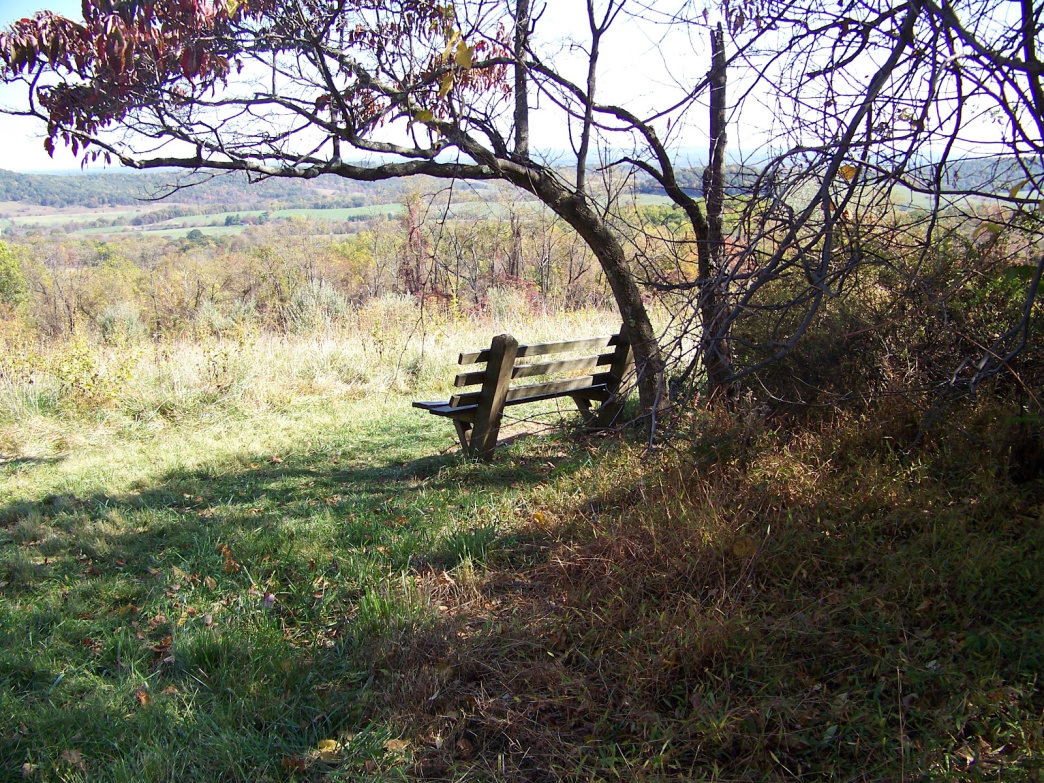 Sky Meadows Bench. Malee Oot