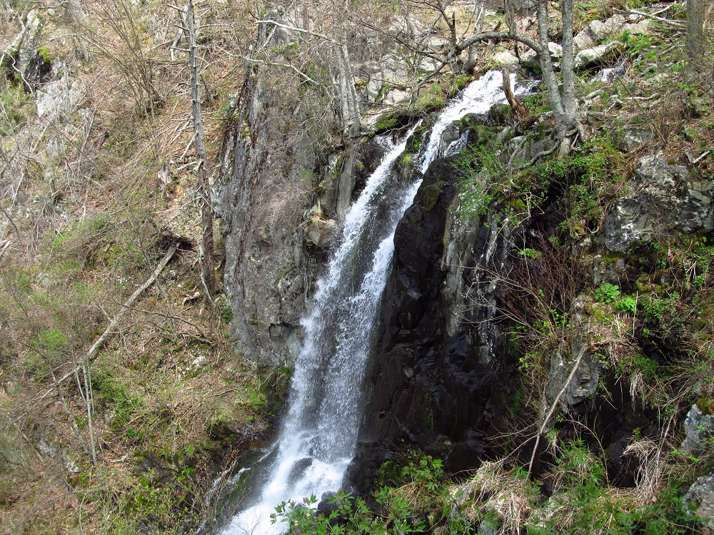 Lewis Spring Falls Loop