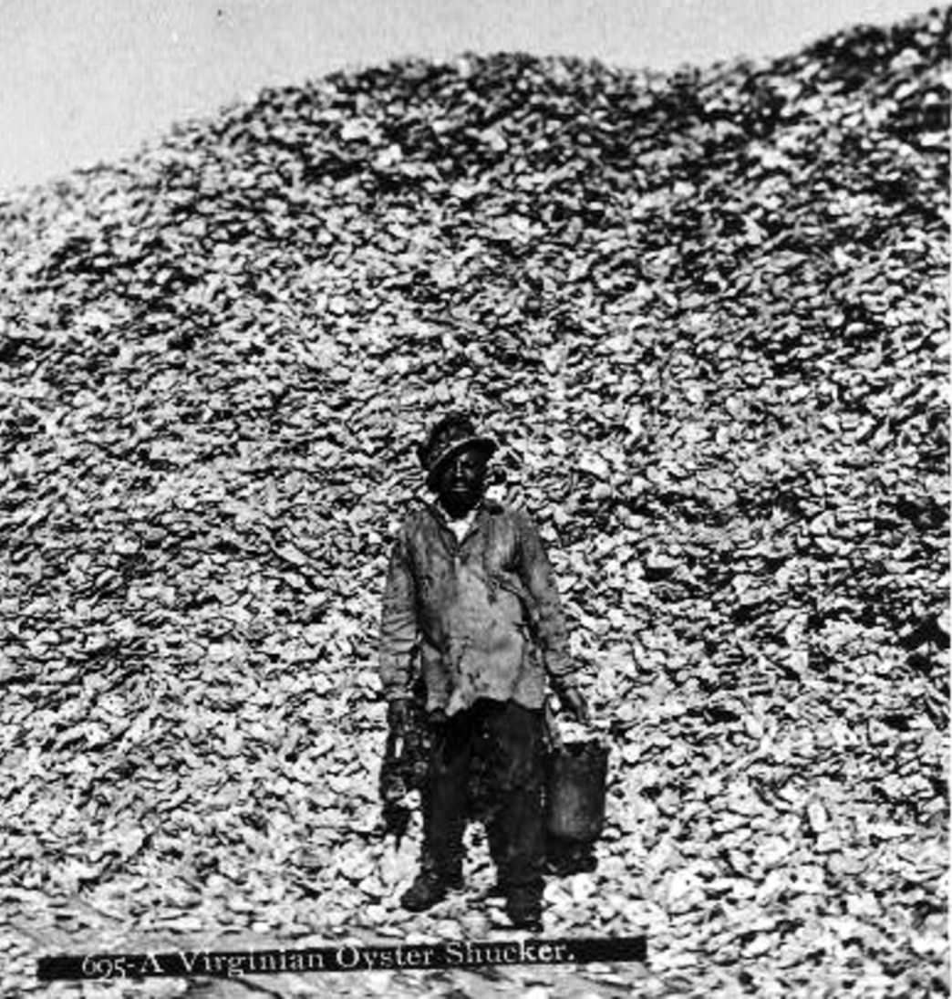 An oyster shucker stands in front of an enormous pile of shells. Courtesy of Visit Eastern Shore, Virginia