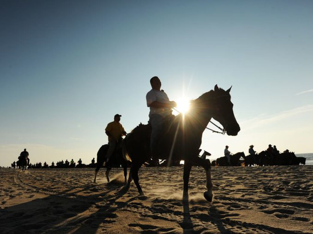 The July Chincoteague Pony Penning draws people from around the world. Courtesy of Visit Eastern Shore, Virginia