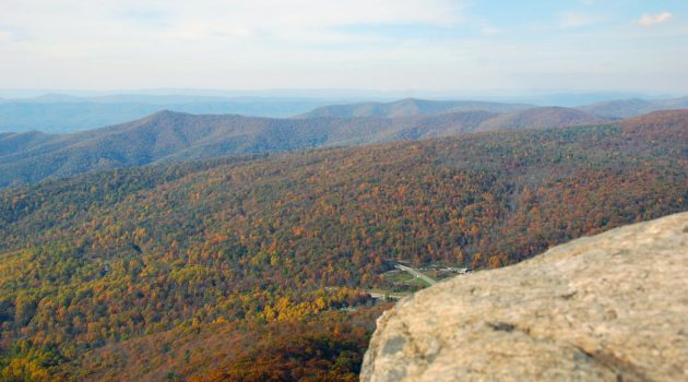 The Top 5 Scenic Drives in the Shenandoah Valley (and Where to Stop Along the Way)