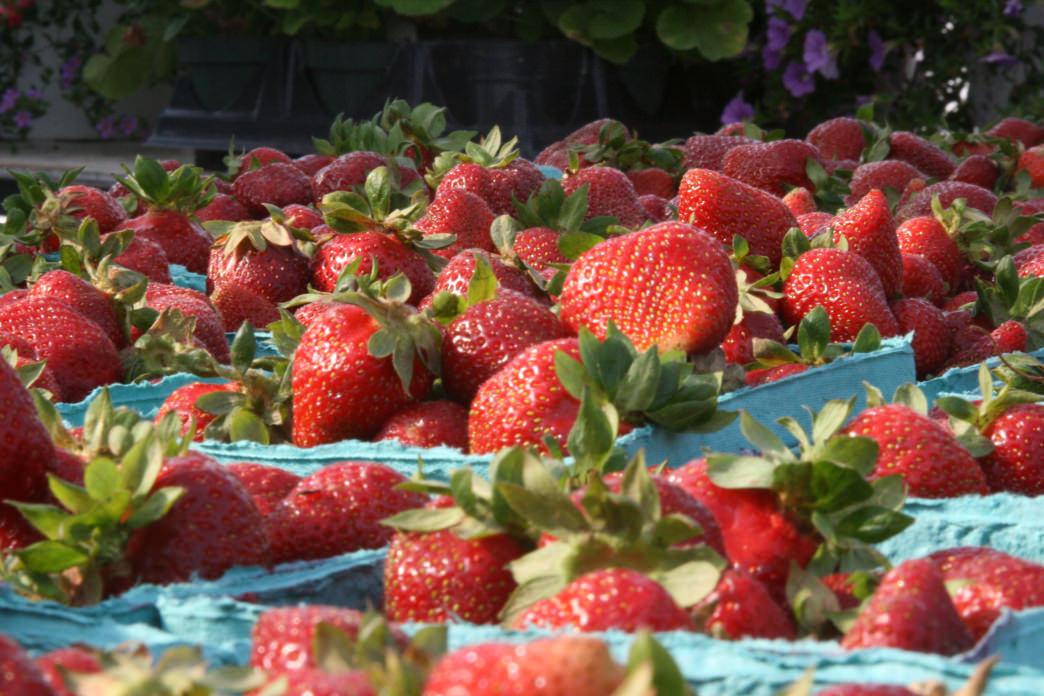The Abingdon Farmers Market has nearly 100 vendors.