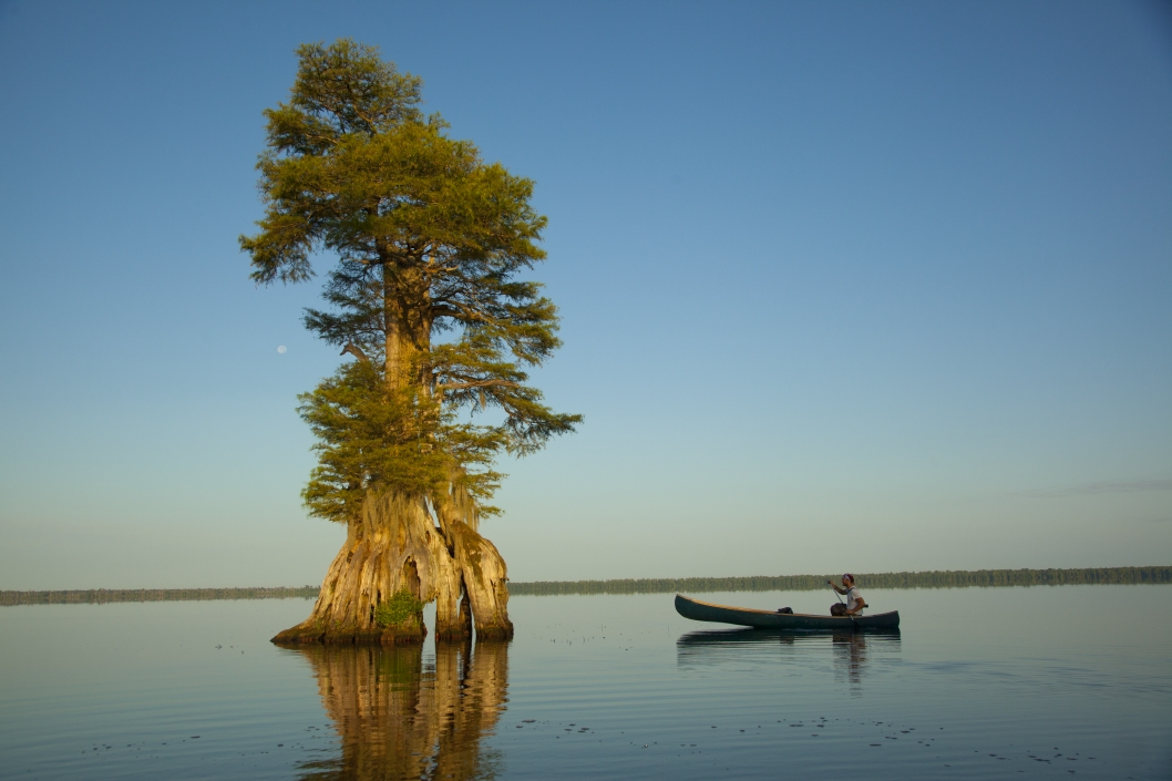 Lake Drummond