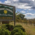 10 Kid-Friendly Breweries & Wineries